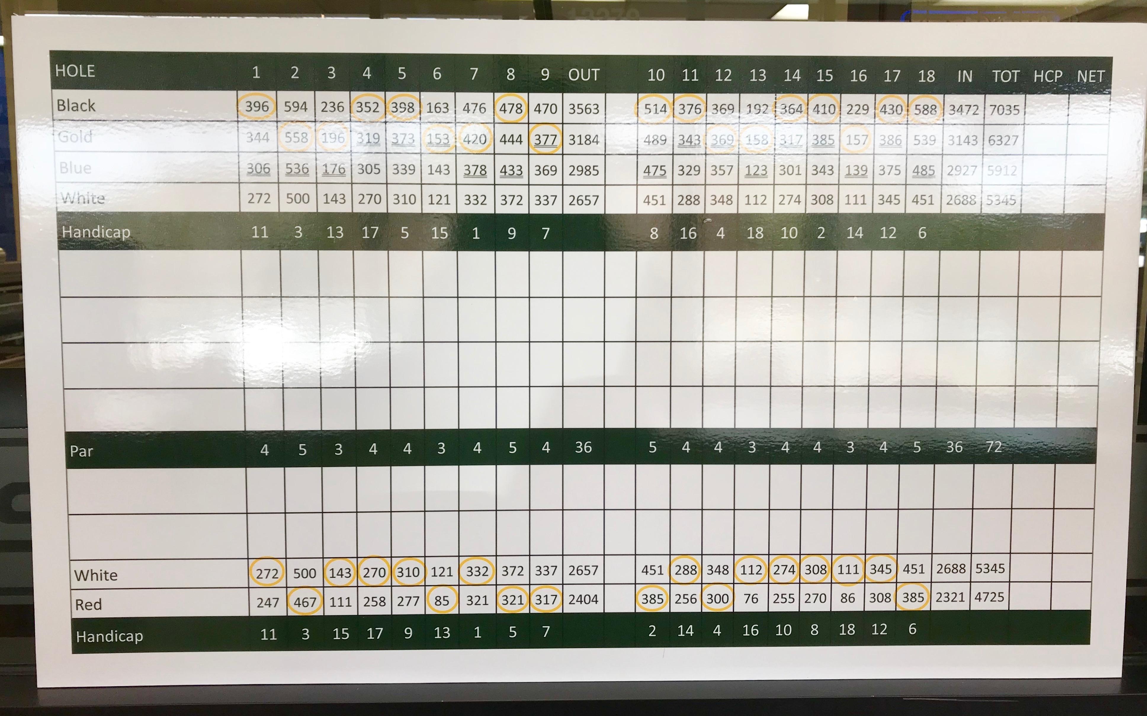 Golf Tournament Scoreboard