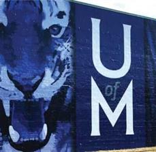 University of Memphis Wall Graphics