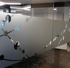 Biovid Decorative Window Graphics