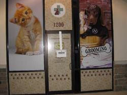 Blackhorse Animal Hospital Window Graphics