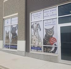 Westmount Animal Clinic Window Graphics