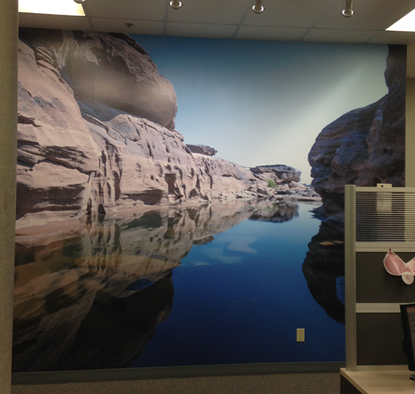 ZTR TR Wall Graphics 3