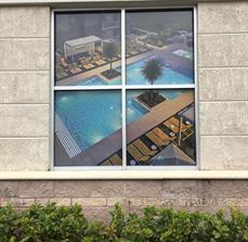 Decorative Pool Window Graphics