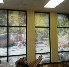 Decorative Window Graphics