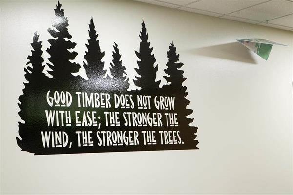 school wall graphics