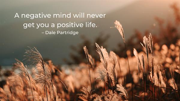 Partridge - positive life quote