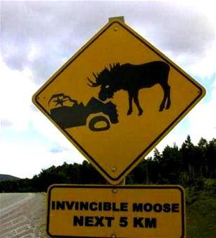 funny vehicle signs