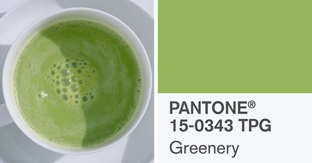 pantone-color-of-the-year-2017-greenery-thumb640