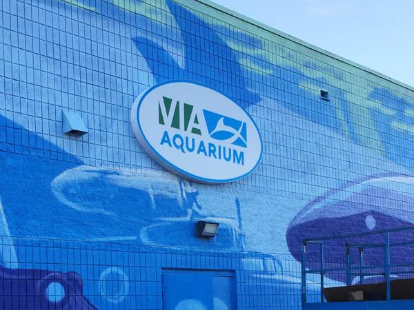 via-port-aquarium-1