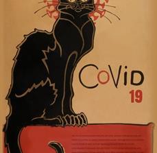 Cat Noir Germ Prevention Poster