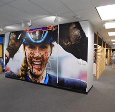 USA BMX Wall Graphics