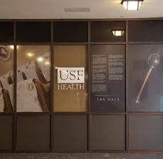 USF Health Window Graphics