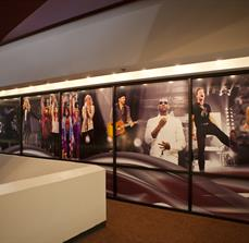 Performer Wall Graphics