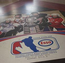 Hockey floor graphics