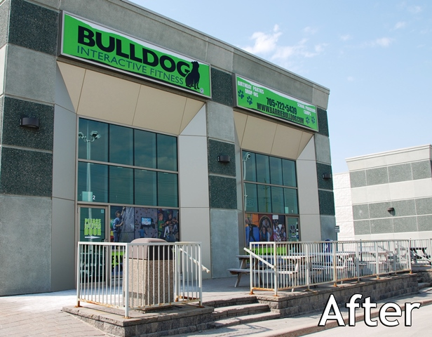fastsigns_cestaric_bulldog_interactive_fitness_window_after_1