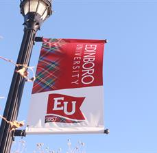 University Lamp Post Banners