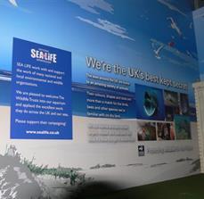 SeaLife Interior Wall Graphics and Signs