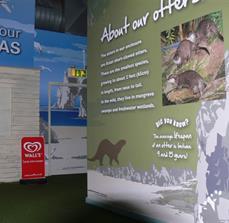 SeaLife Informative Wall Graphics