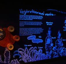 SeaLife Illuminated Wall Graphics