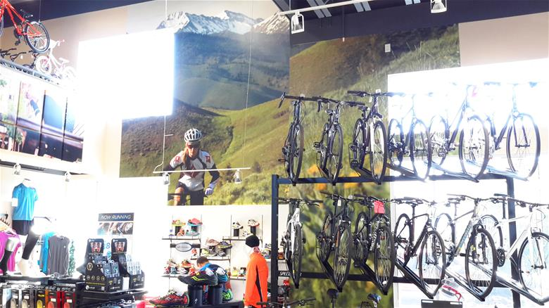 Bike Store Wall Graphics