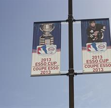 ESSO Hockey Exterior Banners