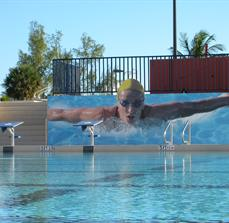 Swimming Pool Graphics