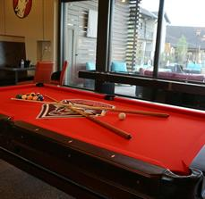 Pool table graphics