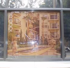 Apartment Window Shades